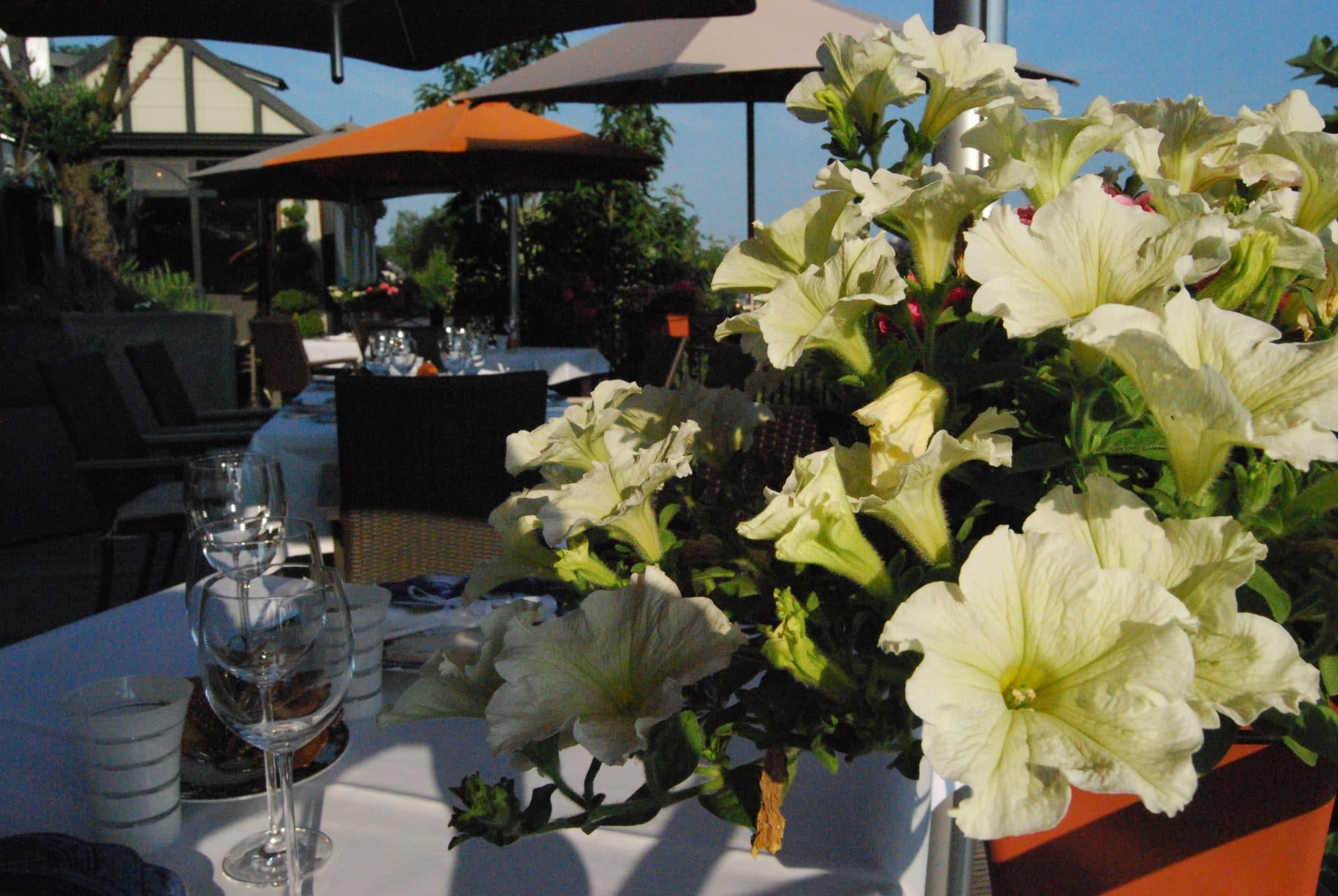De veranda en het terras hostellerie gilain for Lay outs terras van het restaurant